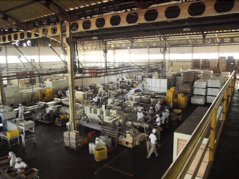 industrias-amapola-7
