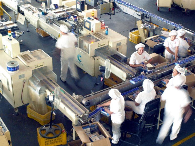 industrias-amapola-8